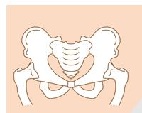 <span>2.</span>出産後の骨盤の歪み