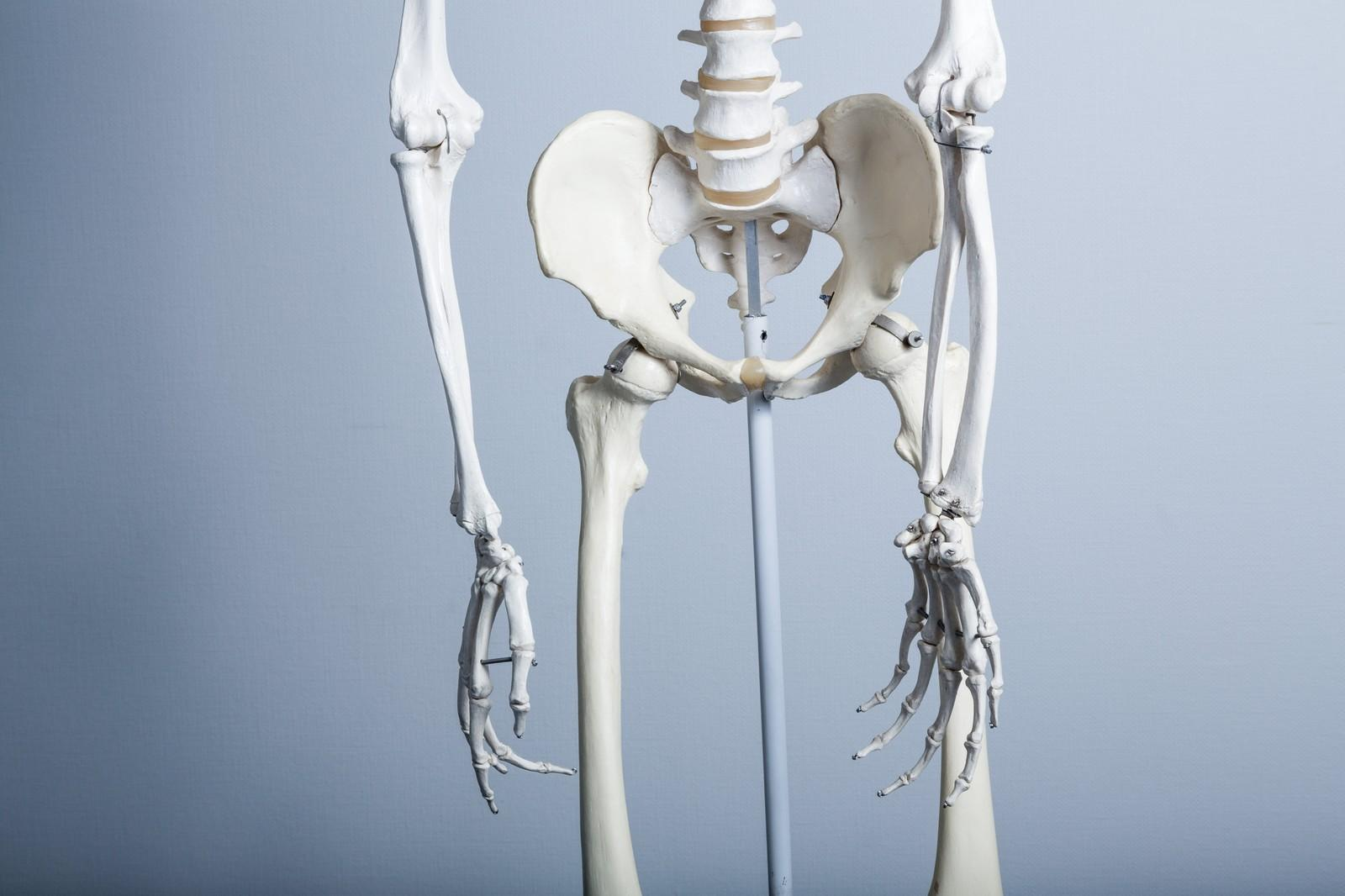 <span>1.</span>出産後の骨盤ってどうなっているの?