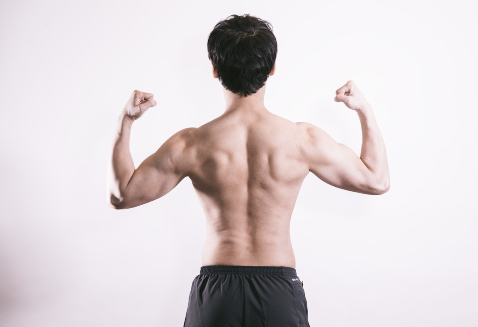 <span>2.</span>肩の骨と筋肉の関係性