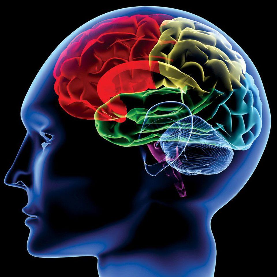 <span>1.</span>脳内物質のバランスの崩れ